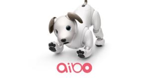 【aibo(アイボ)】犬型ロボットはここまで進化した。人間的愛情を注いでしまう理由