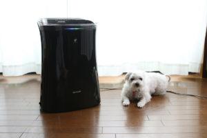【猫】ペットの毛向けの空気清浄機のおすすめはコレ!「脱臭派」と「抜け毛派」のベストを一挙に紹介
