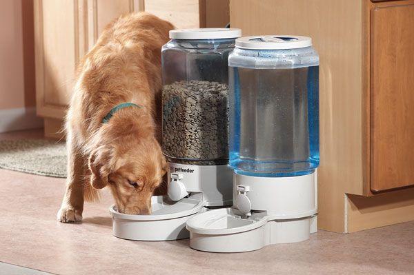【これで安心】ペット用自動餌やり器がすごい!犬猫どちらも利用可能